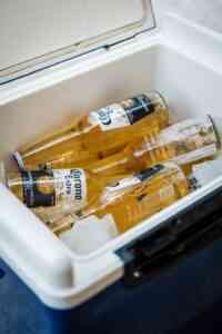 best Coolers to Paint
