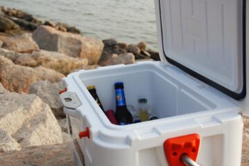 the best Coolers to Paint